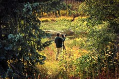 The Photographer (miss.interpretations) Tags: photographer anseladams nature autumn fall views artist colors red yellow green gold reflections lake greenhornmountain colorado canon mirrorless canonm3 mountains frame tripod