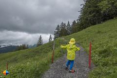 Gate (HendrikMorkel) Tags: austria bregenzerwald family sonyrx100iv vorarlberg sterreich mountains alps alpen berge