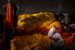 Marigold, Kolkata (Marji Lang Photography) Tags: poverty city flowers light people orange woman colors yellow composition mood moody emotion market indian photojournalism documentary streetportrait atmosphere scene soul frame indians emotional widow saree marigold kolkata soulful sari lightandshadow flowermarket calcutta struggle bengali westbengal garlands howrahbridge howrah travelphotography republicofindia indianpeople ef247028l indiansubcontinent whitesari documentaryportrait travelanddocumentaryphotography soulfulportrait marjilang