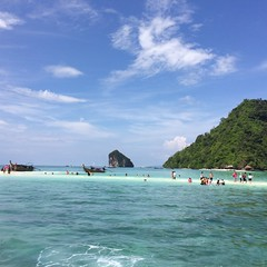 Survivor Island |Primalux | Krabi 2015