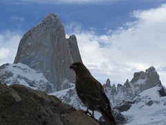 "Fitz Roy <a style=""margin-left:10px; font-size:0.8em;"" href=""http://www.flickr.com/photos/83080376@N03/17829878085/"" target=""_blank"">@flickr</a>"