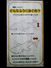 Educació marítima (Avantime Jacobus) Tags: park art tokyo kyoto asia freak osaka nara japon mie cartell friki japo curiosos