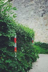 Barriers (andersdenkend) Tags: red white blur green leaves stone wall germany chains fuji dof bokeh depthoffield chain stop hedge fujifilm barrier pillars rothenburg hecke begrenzung xpro1 vscocam fujinonxf27mmf28