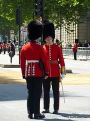 State Opening of Parliament 2015 (SouthEastern Star ★) Tags: england london whitehall centrallondon grenadierguards cityofwestminster grenadierguard stateopeningofparliament2015