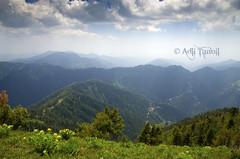 View from Miranjani top 31052016 (Adil Tanoli) Tags: miranjani nathiagali adiltanoli nikon d5100 sigma 1750mm landscape pakistan abbottabad green clouds top galyat