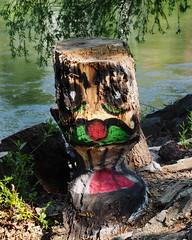 Vienna, Biber (Sam.24) Tags: vienna austria wasser kunst holz baum biber stamm daunaukanal