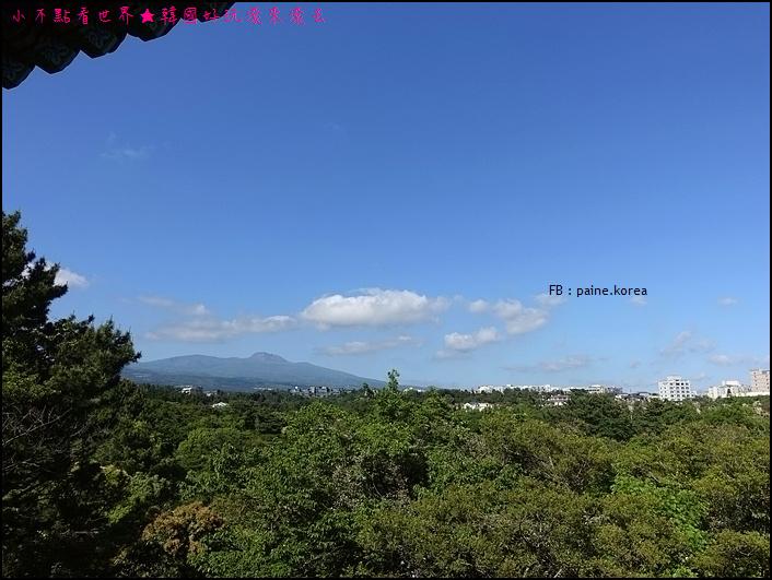 濟州島天帝淵瀑布 (9).JPG