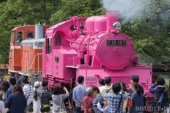 Pink SL at Wakasa Railway (34) (double-h) Tags: sl tottori jnr steamlocomotive c12   eos6d   pinksl wakasarailway  c12 ef100400mmf4556lisiiusm c12167 wakasastation classc12 c12 sl