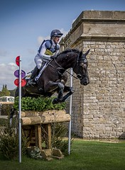 The Jump (Trev Bowling) Tags: horse house race jump jumping time district sunday may peak competition crosscountry international jockey rider equestrian trials equine chatsworth gallop 2016