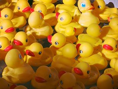 A Ducky Day . (Irene - HAPPY NEW YEAR) Tags: park fun toys fairgrounds duck funtime ducks summerfun ambleside bathtoys babyducks toyducks localpark westvancouverbc ducksinwater fairgroundgames fairgroundfun fairgroundtoys allducks ducksinthebath kidsbathtoys ducksforkids