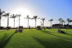 IMG_4996 (Ethene Lin) Tags: sandiego coronado hoteldelcoronado pacificocean