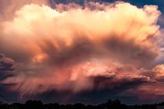 (el zopilote) Tags: 500 albuquerque newmexico sandiamountains landscape cityscape clouds trees canon eos 5dmarkii canonef24105mmf4lisusm fullframe 700 wow