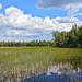FIN_185 - Pyhä-Luosto