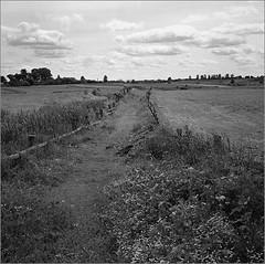 (Yuriy Sanin) Tags: yuriy sanin old road blackandwhite field grass sky clouds woodenfence          6x6  medium format