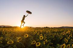 The Sunflower Field (jrountree333) Tags: float levitate nikon sunflower flower sun sunset umbrella silhouette landscape d7200 spokane washington pnw golden beauty