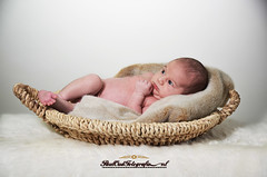 NewBornFotoshoot.4