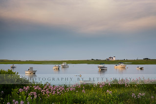 Summer on the Oyster River, Cape Cod