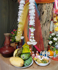 Thailand Hill Tribe: Religious Altar and Offering (shaire productions) Tags: travel people food heritage nature fruit thailand religious village display traditional culture lifestyle altar mango thai offering tradition ethnic indigenous hilltribe