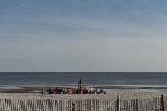 20150404007596_saltzman (tourosynagogue) Tags: usa beach dinner bonfire ms biloxi passover sedar havdalah tourosynagogue presedarservice