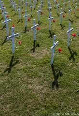 Lest we forget (Beth Madigan) Tags: newzealand graveyard museum army memorial cross headstone poppy gravestone northisland anzac waiouru nationalarmymuseum