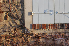 Lever de Soleil (skipmoore) Tags: france stonework vine shutters barbizon