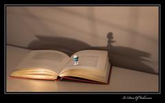 Schtroumpf  lunettes (Le Dieu of Volcanoes) Tags: france canon toy book google europe flickr kinder smurf livre smurfs jouet auvergne personnage puydedome schtroumpf schtroumpfs eos70d schtroumpfalunettes