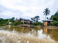 Home (felipebeatle) Tags: house home nature architecture river colombia afro choc atrato quibd