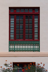 A Window On City Hall-Literally (jah32) Tags: windows window simple sw casagrande arizona nikon d7000