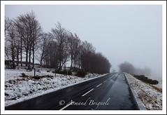 Brouillard sur le Gerbier des Joncs (armandbrignoli) Tags: paysage ardche brouillard route neige gerbierdesjoncs bw landscape snow canon 5d2 fog