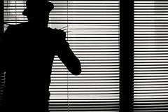 Blinds (duck vs. chicken) Tags: newzealand christchurch blackandwhite man monochrome silhouette blackwhite office blinds