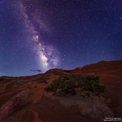 Desert Stars (Aron Cooperman) Tags: arizona night landscape nightscape desert nightsky nightphoto milkyway vermillioncliffs wbpa whitepocket nikon1424 nikond800 aroncooperman openlightphoto april2016 escaype