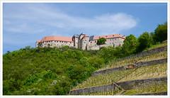 Schloss Neuenburg / Freyburg (Unstrut) (Harald52) Tags: schloss freyburg tourismus burg geschichte neuenburg weinberge sachsenanhalt unstrut