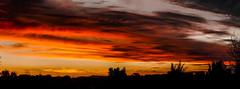 Sunset panorama 03 Jun 2016 (1 of 1) (erin.gulick) Tags: nature beauty sunset sunrise australia minimalist serene skies panorama stitchedpanorama silhouette horsham victoria