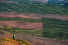 Taking It All In (llabe) Tags: child sunset dusk boy wheatfields farmland steptoebutte palouse washington nikon d750
