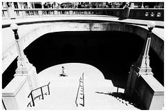 Stepping into the light (DHaug) Tags: blackandwhite monochrome ottawa steps streetphotography pedestrian fujifilm highkey highnoon xpro2 xf16mmf14rwr
