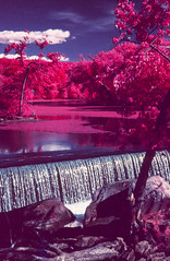 Concord River Reservoir (Markus Jork) Tags: leica lake film river 50mm dam slide summicron infrared m3 fpp colorir aerochrome