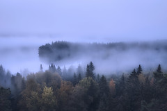 There Used To Be Darkness (MilaMai) Tags: fog mist forest autumn spruce valley aulanko aulankovuori hmeenlinna milamai finland suomi landscape blue trees nature morning dawn foggy maisema mysterious atmospheric highangle fall lake