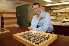 LepNet JoeMcHugh (UGA College of Ag & Environmental Sciences - OCCS) Tags: lepnet 2016 butterfly butterflies moths georgiamuseumofnaturalhistory uga universityofgeorgia ugaentomology taxonomy