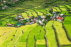 Batad Village (pietkagab (on the road... in Peru)) Tags: batad village rice ricepaddies riceterraces green banaue ifugao luzon cordillera philippines asia pietkagab piotrgaborek photography pentax pentaxk5ii landscape trip travel tourism trek hike sightseeing tour adventure daylight