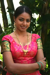 South Actress Madhuchandaphotos Set-3-Hot In Traditional Dress (34)
