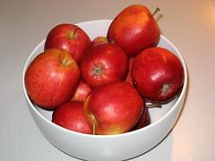 Gott, Schpfer aller Dinge (amras_de) Tags: apfel pfel malus jablon bleslgten pomarbo unapuu omenapuut pommier obelis sierappel apelslktet iekelmasi