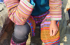 Flower Hmong (denismartin) Tags: colour colors opera southeastasia dress market tradition miao ethnic hmong vitnam bacha tonkin denismartin indochinapeninsula miaoethnicity
