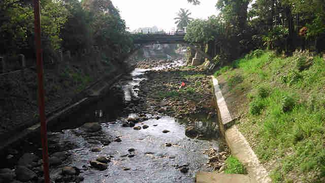 Pencemaran sungai Ciliwung di Bogor
