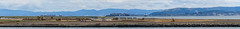 clearing the island for much needed future homes (pbo31) Tags: california blue sky panorama color skyline island oakland bay spring construction nikon may large panoramic bayarea land eastbay alameda stitched alamedacounty d800 portofoakland 2015 boury pbo31