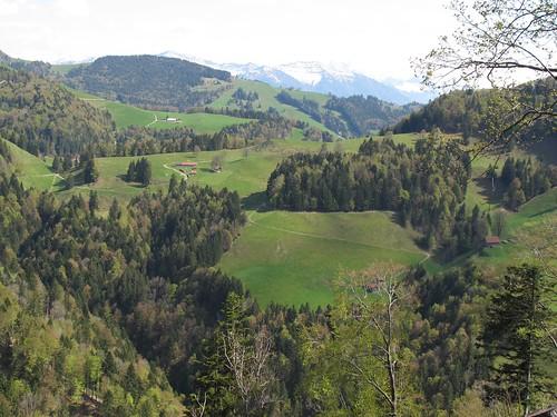 view from Dägelsberger Wiesli