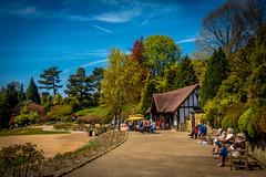 Calverley Grounds, Tunbridge Wells (aquanout) Tags: blue trees sky people kent cafe parks teahouse
