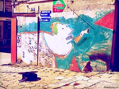 street art Veliko Tarnovo (Elena Scortecci) Tags: street urban streetart art graffiti strada arte cigarette smoke bulgaria urbano tarnovo velikotarnovo fumare sigaretta veliko