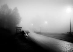 fade out (Zlatko Vickovic) Tags: blackandwhite monochrome serbia streetphotography novisad vojvodina srbija streetbw streetphotographybw streetstreetphoto streetphotobw zlatkovickovic zlatkovickovicphotography