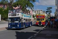 Bristol & Leyland Going Strong (Better Living Through Chemistry37) Tags: buses bristol vrt frankie leyland independents pd2 bristolvr opentopbuses pd23 uwv614s ffy403 dartpleasurecraft railriverlink busessouthwest sl36lxb devonindependents