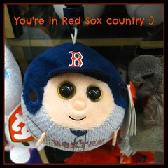 You're in  Red Sox country :) (muffett68 ) Tags: redsox advertisement challenge beaniebaby ansh picmonkey redsoxcountry